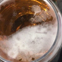 bière,trinquer,soleil,