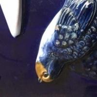 oiseau,bleu,