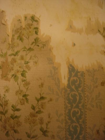 charles baudelaire,tapisserie,fleurs,murs,