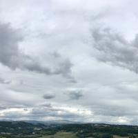 corbeaux,champs labourés,