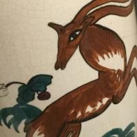 gazelle,antilope,survie,,