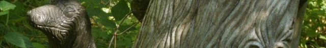 arbre,tronc,