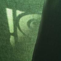 rideau,vert,matin,