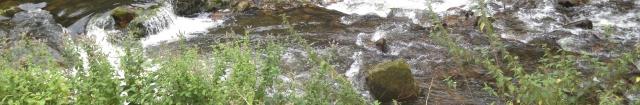 fleuve,eaux,