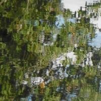rivière,reflet,eau,