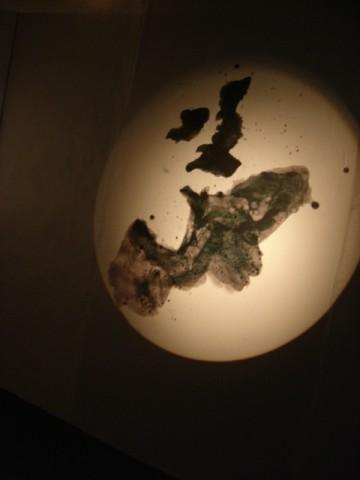 Matthieu dorval,land's end,port-musée,douarnenez,