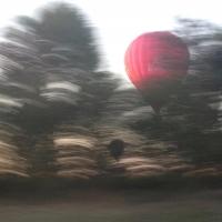 montgolfière,arbre,flou,