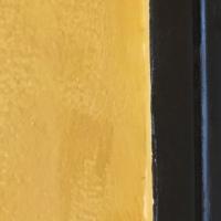 jaune,noir,bleu,
