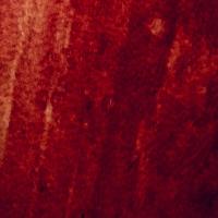 cerise,rouge,sang,
