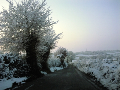 hiver,neige,route,