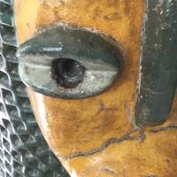 pupille,oeil,