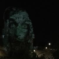visage,arbre,nuit des chimères,