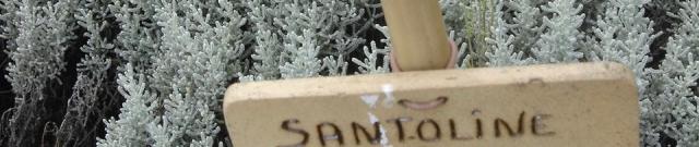 santoline,