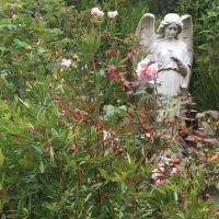 ange,jardin,fleurs,