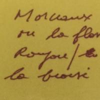 poème,manuscrit,